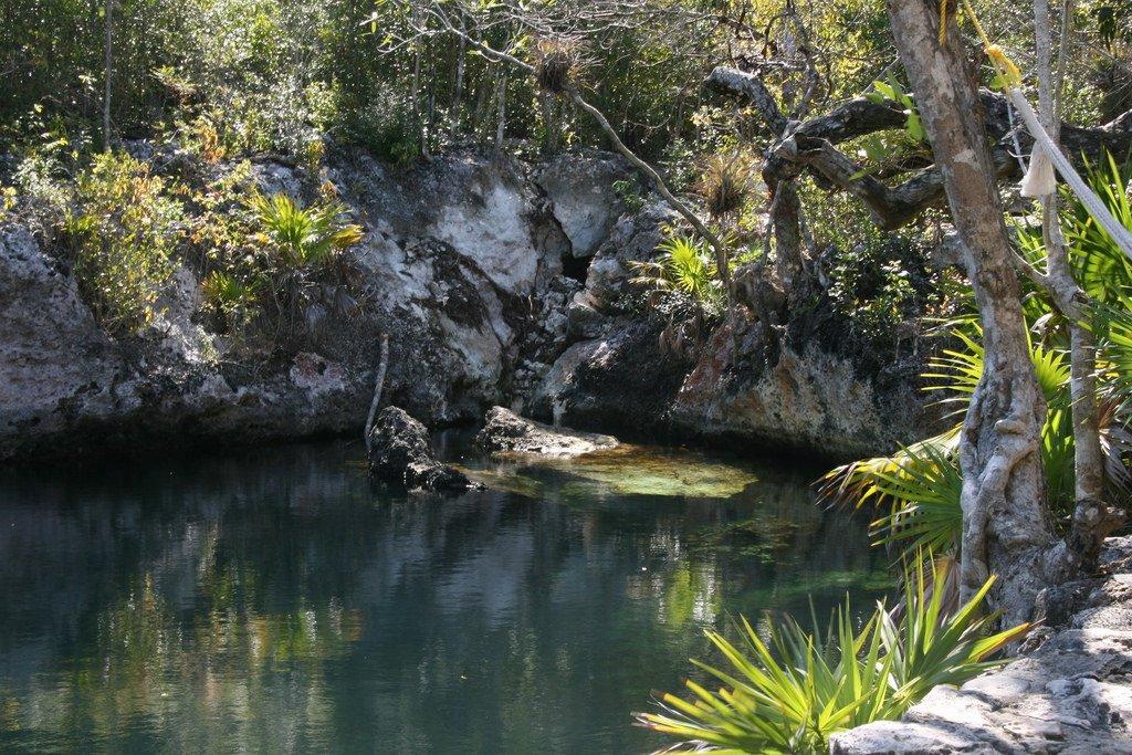 La Cueva de los Peces